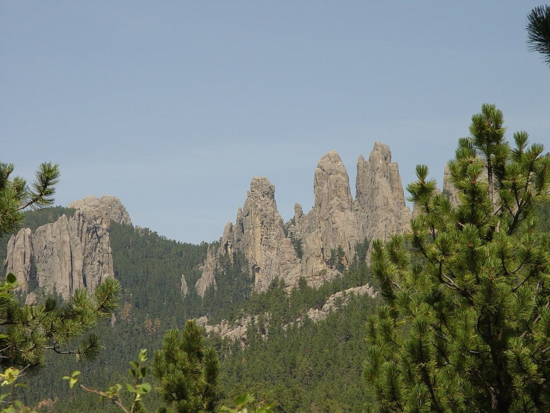 Custer Condition Park