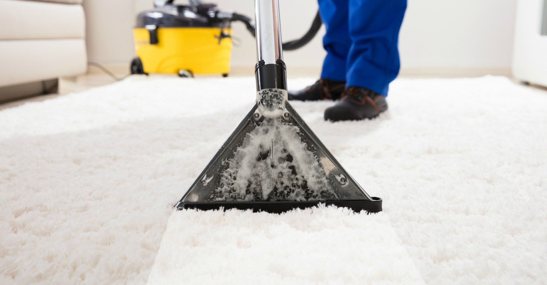 Carpet cleaning techniques professionals use