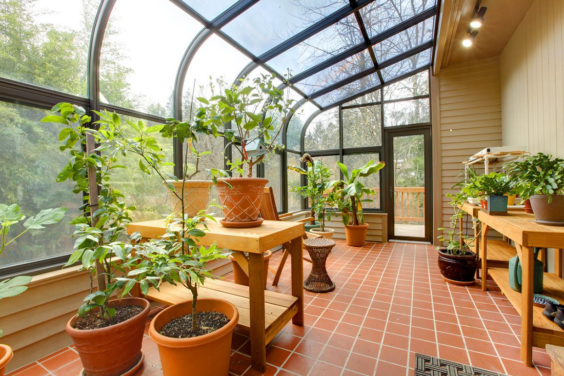 After knowing these amazing benefits of the greenhouse, you will run to buy one