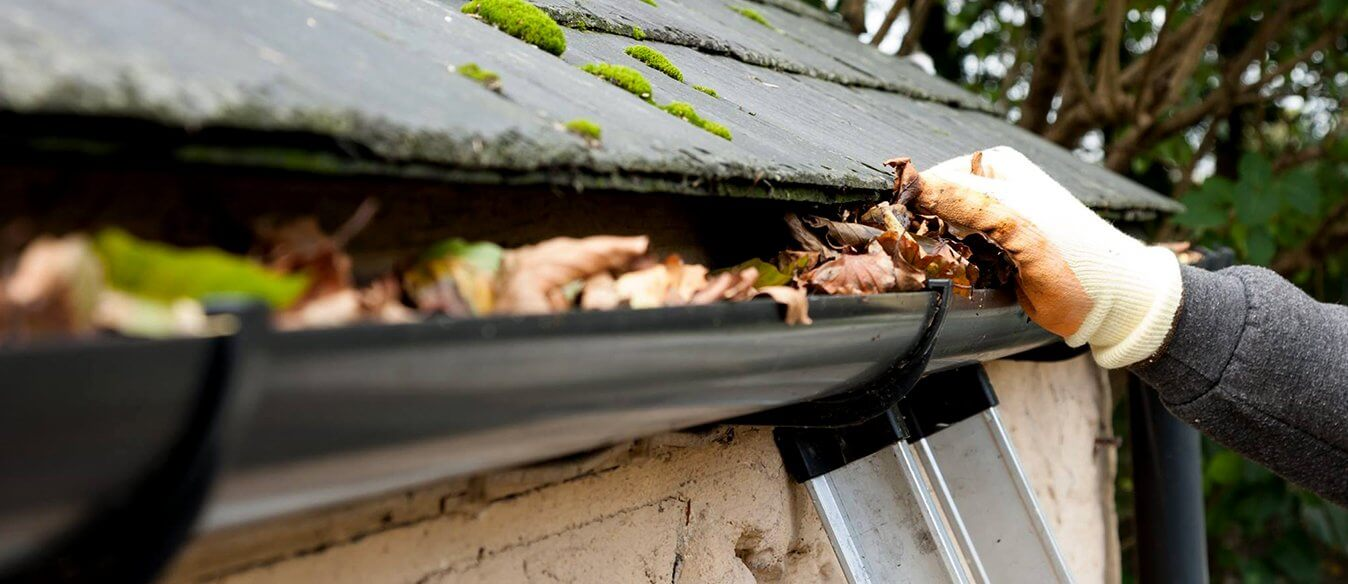 2021 Fall Gutter Cleaning in Maple Ridge, BC